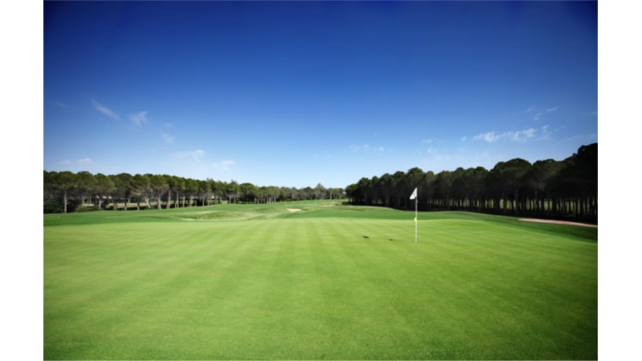 Montgomerie 1st Hole
