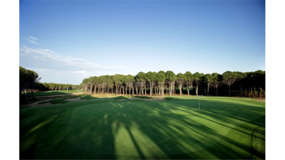 Montgomerie 2nd Hole