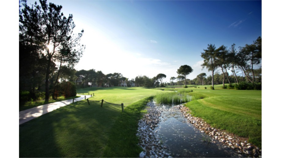 Montgomerie 8th Hole