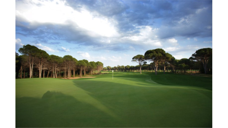 Montgomerie 12th Hole
