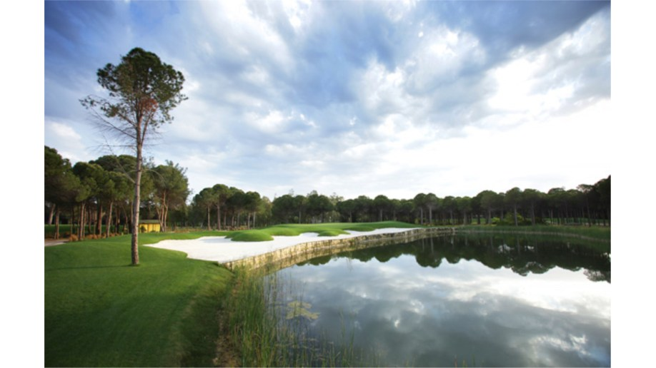 Montgomerie 14th Hole